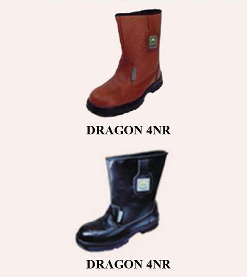 Ung bao ho Dragon 4nr
