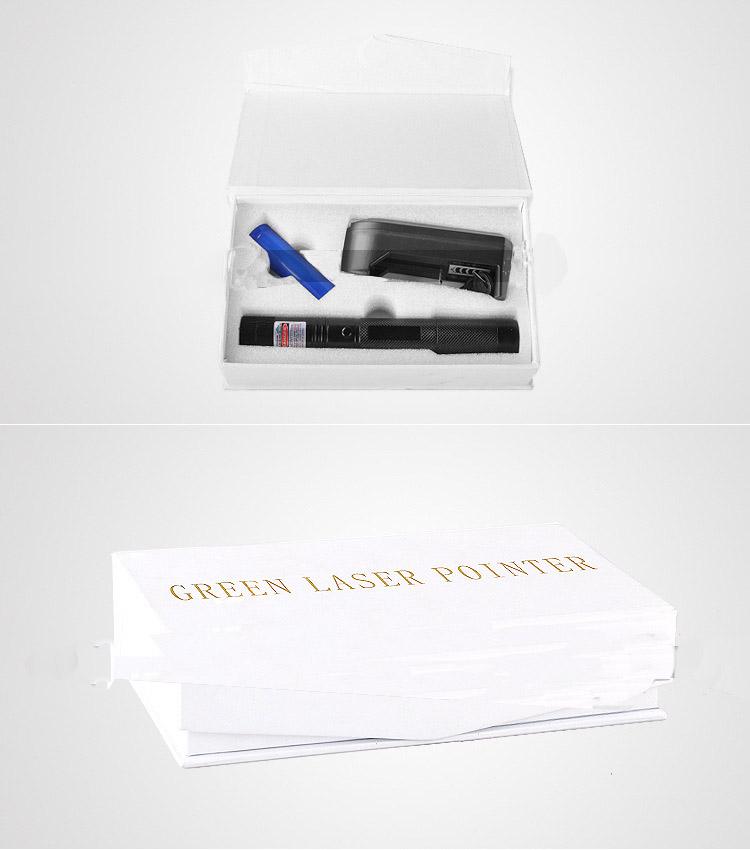 den laser laze 303 1